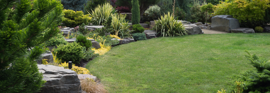 Providing Landscaping Services Since