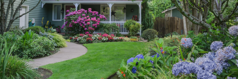 Your lawn and landscaping